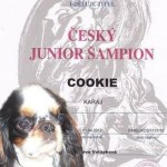 junior cookie